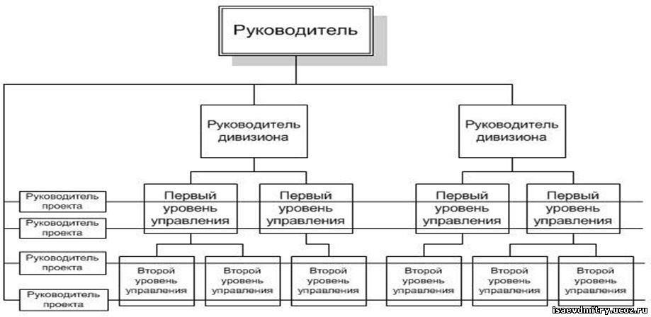 Букмекерской конторы организационная структура